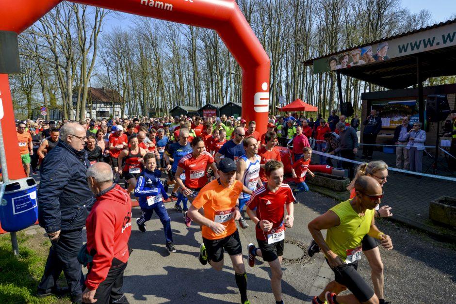 Über 500 Läufer beim dritten Charity-Lauf